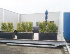 Lounge auf Flachdach